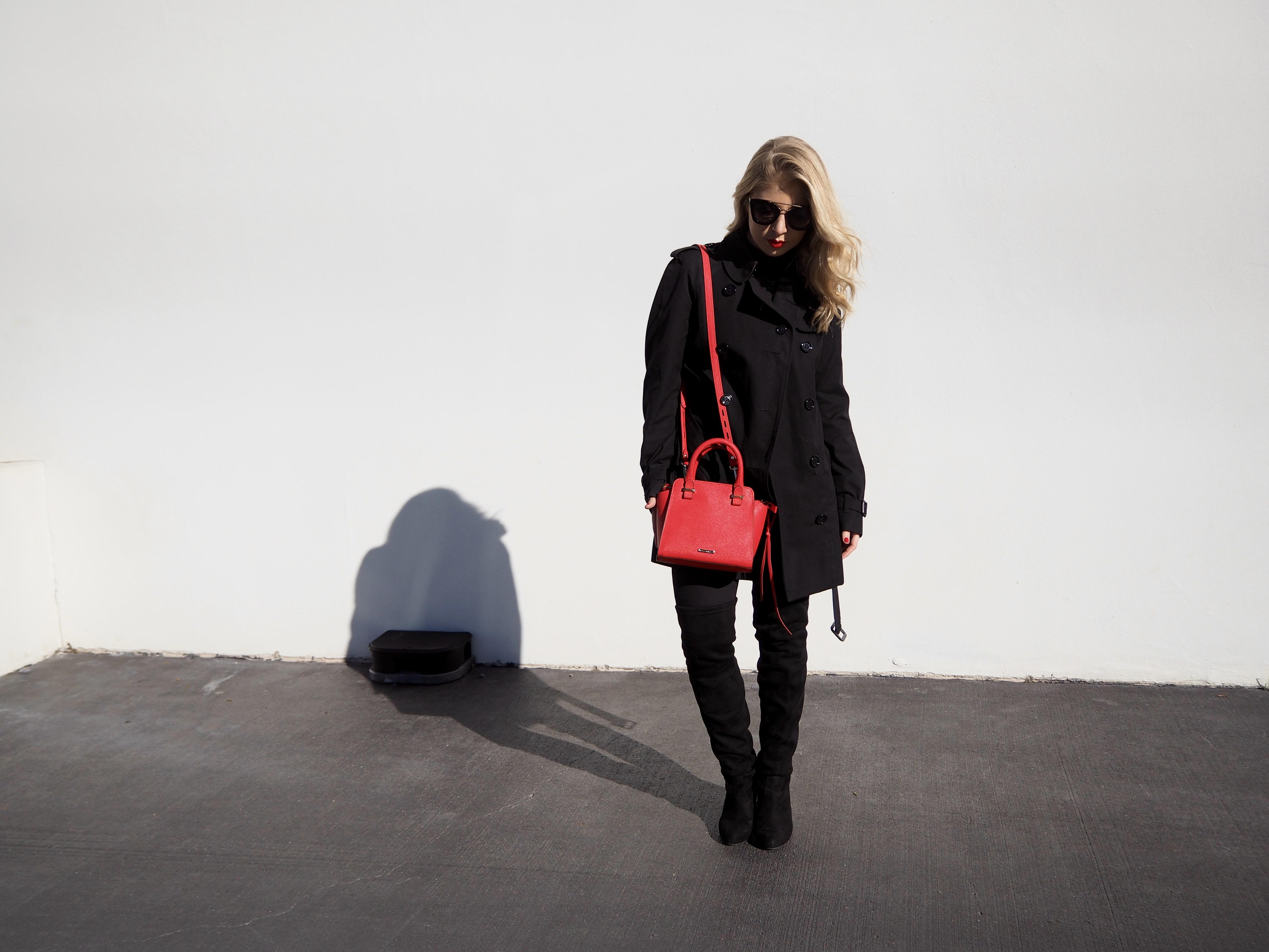 Rebecca Minkoff Purse LifetoLauren